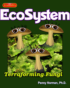 Fungi and First Ecosystems on Land