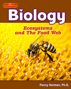 Ecosystems and Interdependence