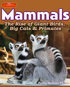 Age of Giant Birds, Rise of the Mammals
