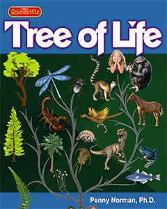 Meet the Family Tree