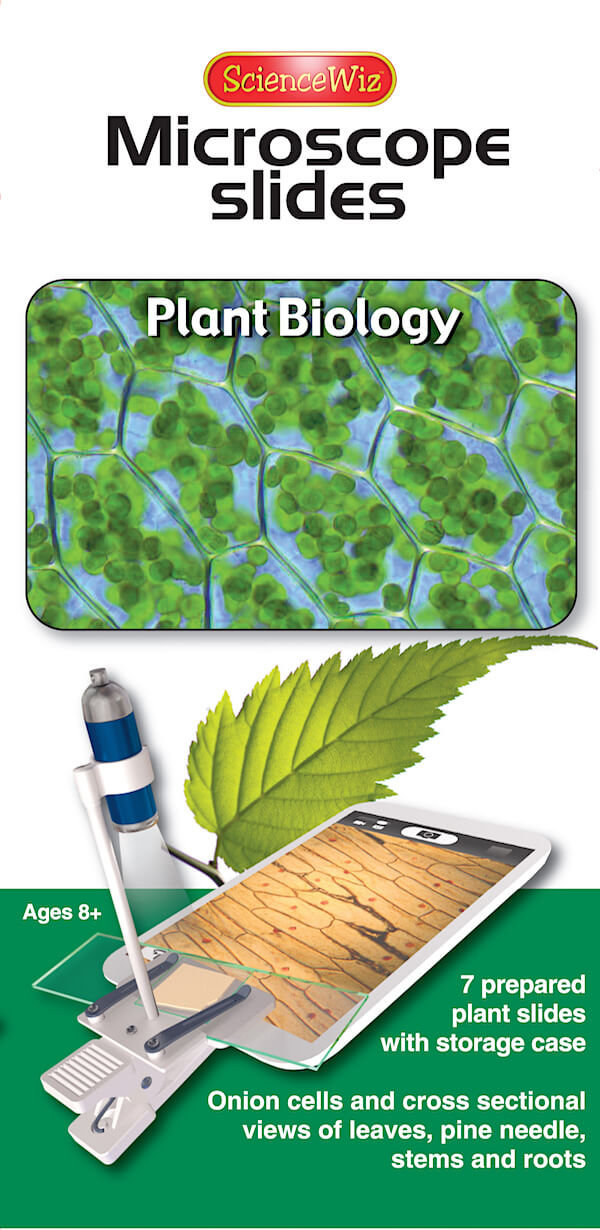 Microscope Slides: Plant Biology