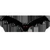 Bats Echolocation