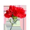 Shattering a Flower