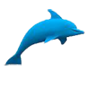 Dolphin Sonar | How Stuff Works