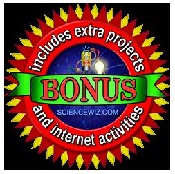 Earn Your Light Bonus Award!